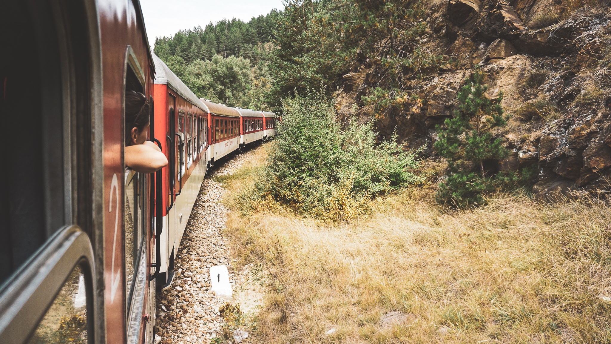 Rhodope Narrow Gauge Train, Bulgaria