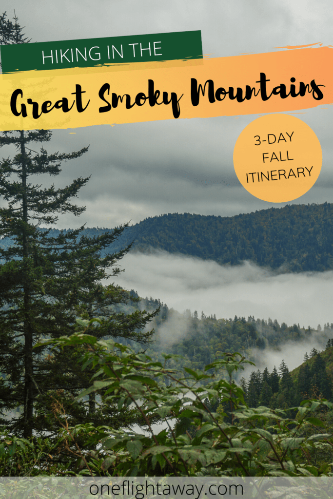 Hiking in the Great Smoky Mountains