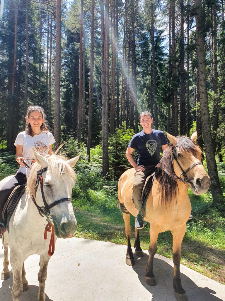 Photos of Bulgaria - horses