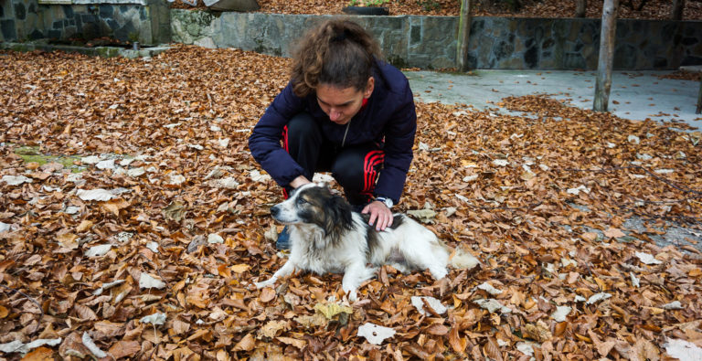 Photos of Bulgaria - Kuche!
