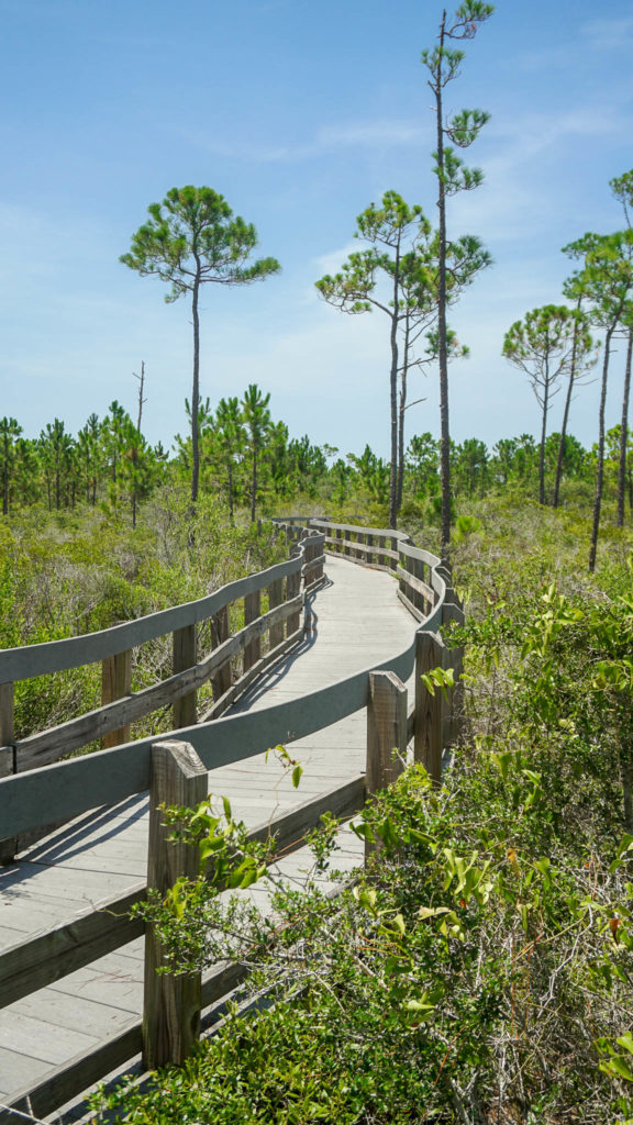 Perdido Key Discovery Nature Trail