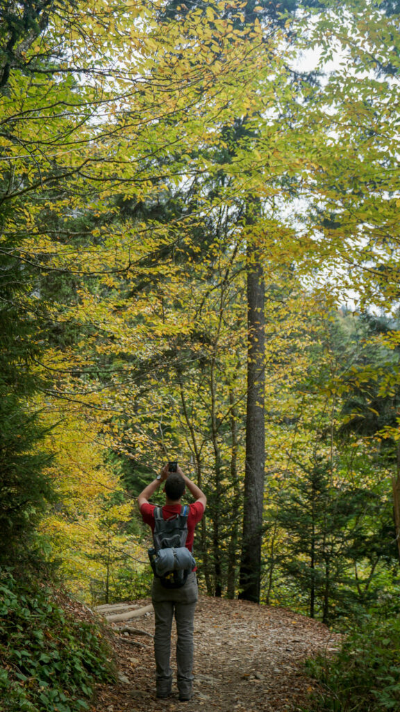 Alex Hiking in the Great Smoky Mountains
